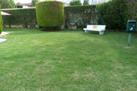 Sale - Apartment/Flat - Pilar de la Horadada - Rio Mar